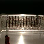A current is sent through the coil. The iron filings line up with the magnetic f